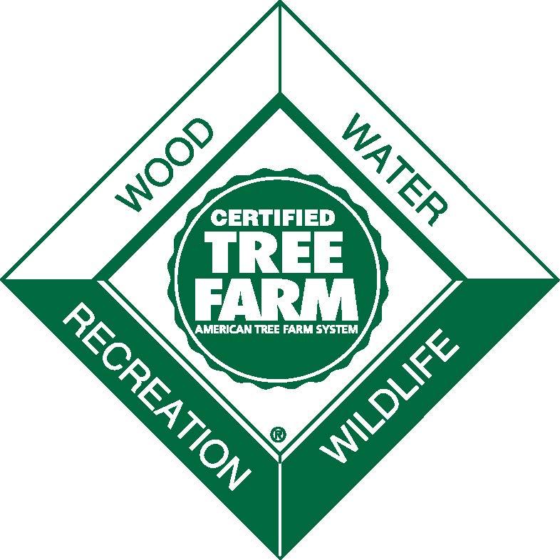 2013 Tree Farmer Award